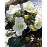 Arrangement artificiel de roses de Noël DANITA, pot en argile, blanc-vert, 20cm