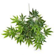 Fausse branche d'érable du Japon ALEXANDER, vert, 60cm