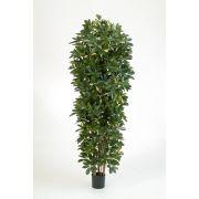 Faux schefflera ANDREW, troncs naturels, vert-blanc, 200cm