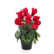 Cyclamen artificiel HEIDI, pot décoratif, rouge, 25cm, Ø5-8cm