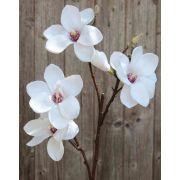 Branche de magnolia en tissu FEMI, blanc, 80cm, Ø12cm