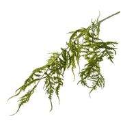 Branche d'asparagus plumosus artificielle CHRISTIAN, vert, 85cm, vert