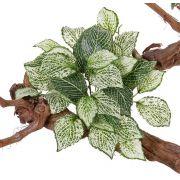 Fittonia artificiel MOLARA sur piquet, vert-blanc, 25cm