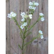Fleur d'hoya artificielle AISHA, crème-blanc, 65 cm
