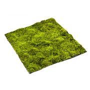 Tapis de mousse de sphaigne artificiel FERMIN, vert, 100x100cm